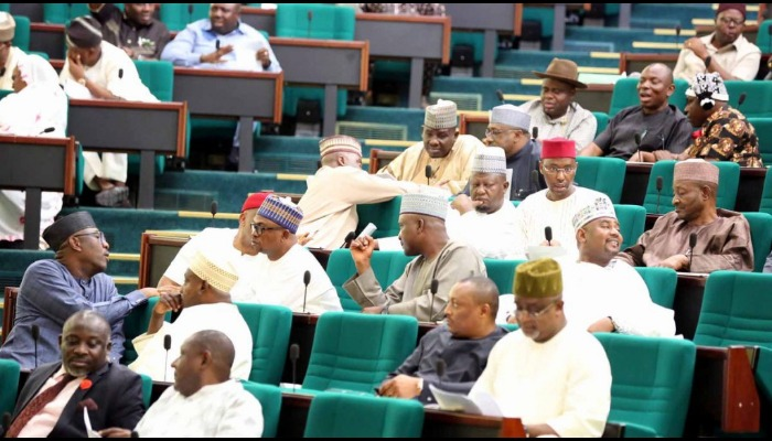 Reps say 2021 budget can't address recession