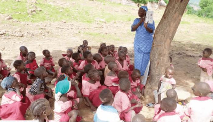 School children learning under a tree