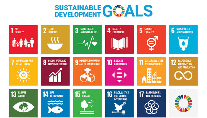 SDGS data analytics