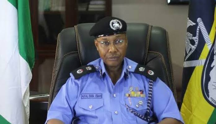 5 things to know about Usman Baba, Nigeria's new police boss - Businessday  NG