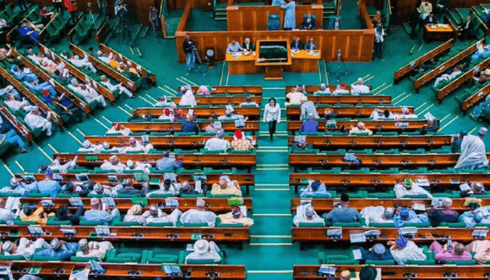 Reps to prioritise national security bills in 2021/22 parliamentary session