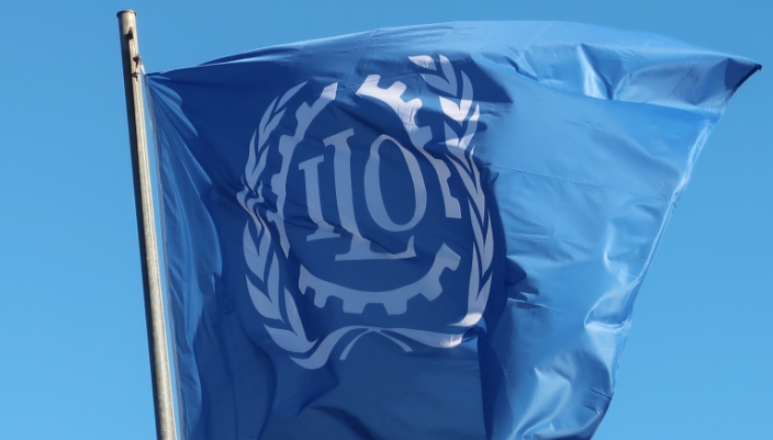 ILO unveils media toolkit to strengthen developmental communication -  Businessday NG