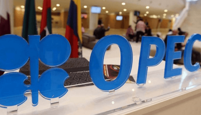 OPEC, ARDA, Africa Energy Chamber mulls strategies to fund energy transition